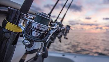 DAIWA fishing reels