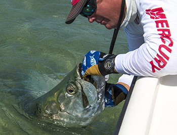 Key West tarpon fishing guide Key West