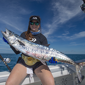 Kingfishing kingfish