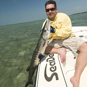 flats fishing for barracudas