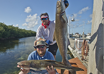 Cobia fishing is great in February