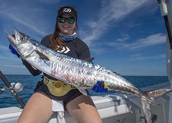 Kingfish in January